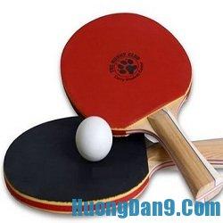 Hướng dẫn chi tiết cách cầm vợt bóng bàn đúng cách cho người mới chơi