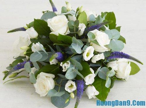 Hướng dẫn cắm hoa hồng trắng đẹp nhất