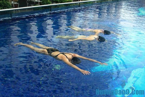 Những kỹ thuật bơi cơ bản cho người mới học