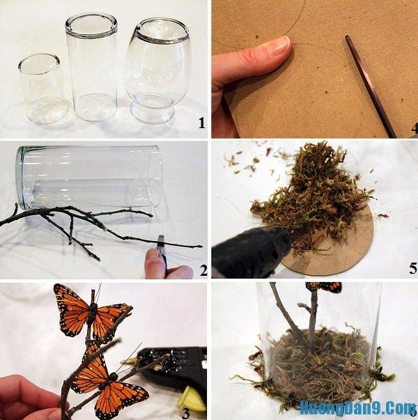 Hướng dẫn chi tiết các bước làm vườn bướm trong lọ thủy tinh