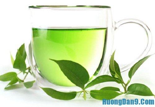Hướng dẫn cách chăm sóc da nhờn hiệu quả bằng nước trà xanh