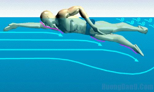 Hướng dẫn kỹ thuật quạt chân cho bơi sải cơ bản đúng cách