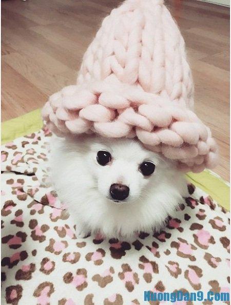 Hướng dẫn cách đan mũ len mũ len Helsinki Hàn Quốc đẹp tại nhà
