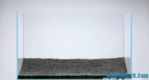 Các bước thực hiện cách làm hồ thủy sinh