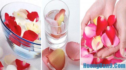 Thực hiện cách làm nước hoa hồng