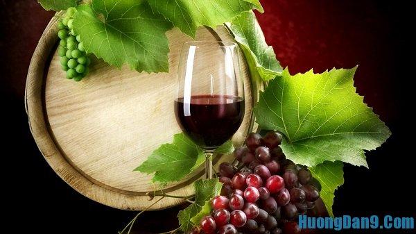 Yêu cầu thưởng thức rượu nho