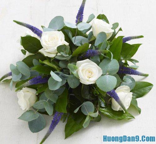 Tự học cắm hoa hồng trắng dễ nhất