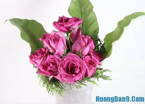 Hướng dẫn cách cắm hoa hồng tươi cơ bản