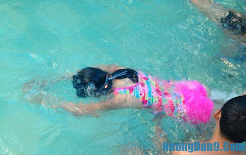 Các bài tập bơi cơ bản