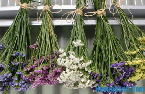 Hướng dẫn chi tiết cách làm hoa khô