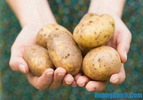 Hướng dẫn cách làm mặt nạ khoai tây giúp trị mụn đơn giản hiệu quả