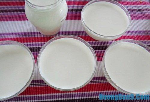 Các bước hướng dẫn cách làm sữa chua dẻo cực ngon