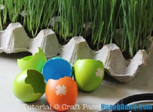 Các bước hướng dẫn cách trồng cây trong vỏ trứng
