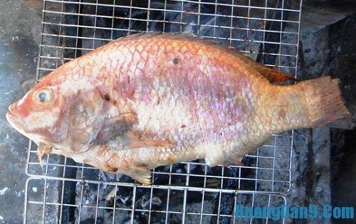 Hướng dẫn chi tiết cách làm cá diêu hồng nướng than hoa đơn giản mà ngon