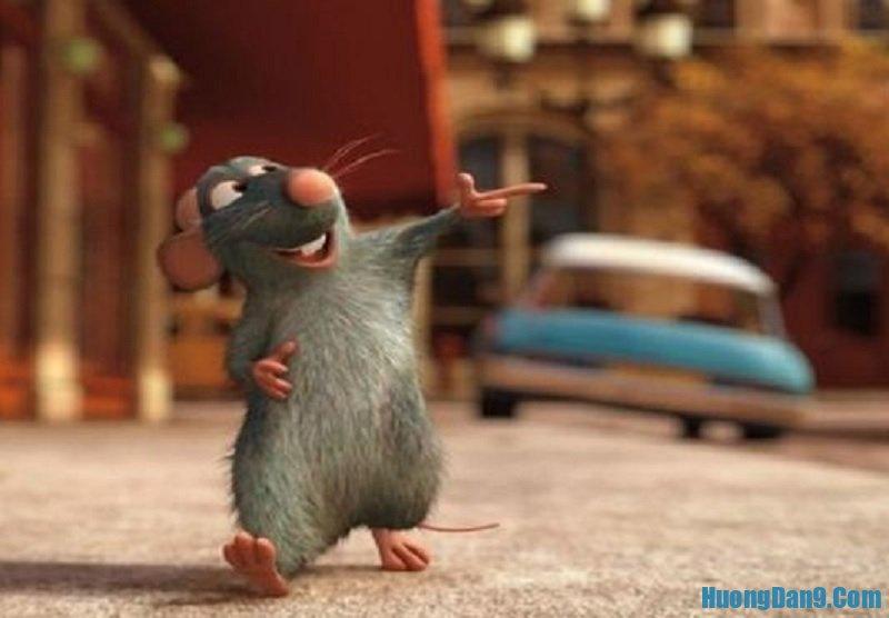 Chuột vào nhà kêu là điềm gì? Chuột vào nhà báo điềm gì?